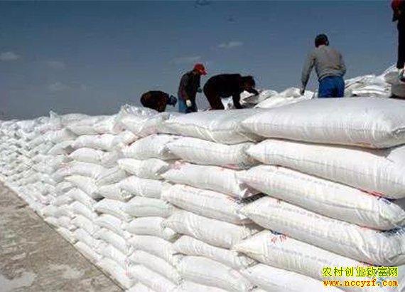 化肥整体价格平稳为主 农户可随用随买不必囤货