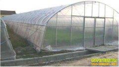 日光温室和塑料大棚哪种好?