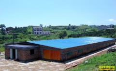 农村小型养猪场该如何设计?