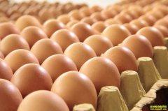 2020年2月21日全国鸡蛋价格行情