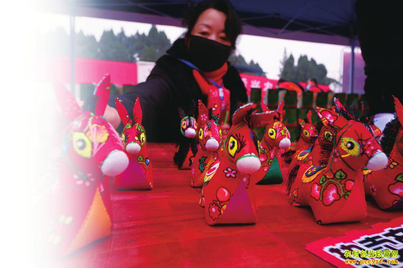 杜毅通过手机直播推销系列毛驴制品。