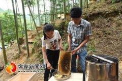 江西上犹县大学生村官李兰芳和钟业伟养蜂年赚40万